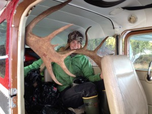 antlers in the plane