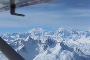 Denali Flight Tours