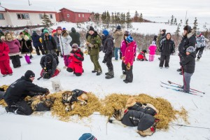 iditarod-at-checkpoint
